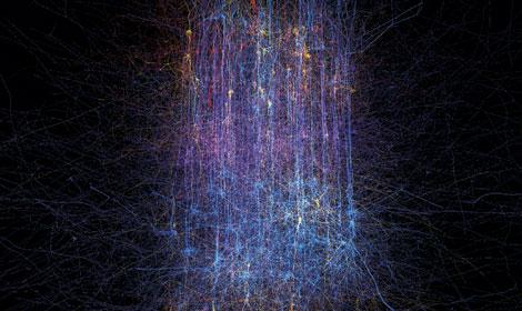 Cerebro biónico: simulación de 50 tipos de neuronas - Supercomputador IBM Blue Gene