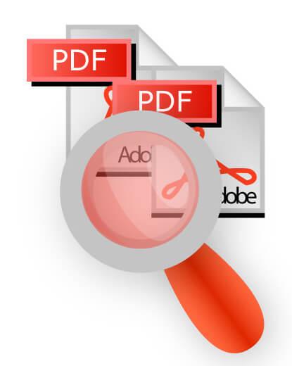 PDF embedded